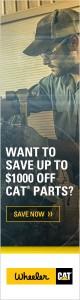 Cat Repair Options, Save $100