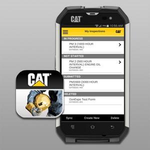 cat_inspect